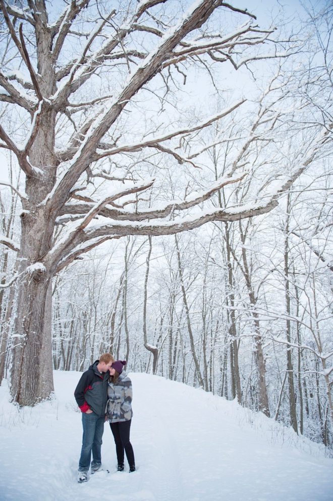 15-oak-tree-snow-engagement