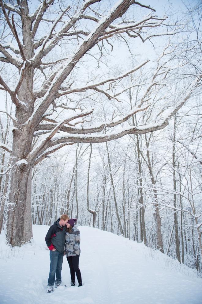 15-oak-tree-snow-engagement