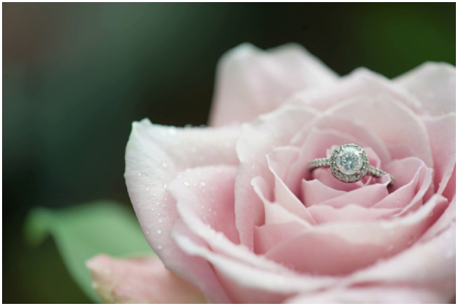 Amberlee-Christey-Photography-2015-Best-of-weddings-West-Virginia__0130