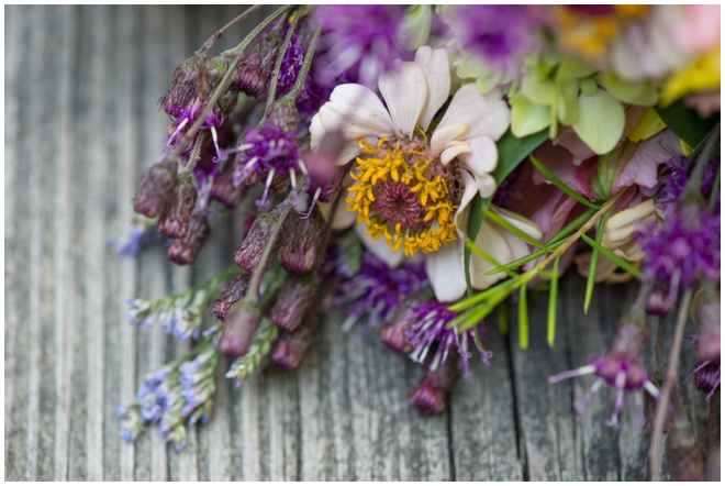 005-Dolly-Sods-Wedding-Elopement-wildflower-bouquet